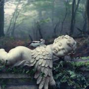 Ange dormeur