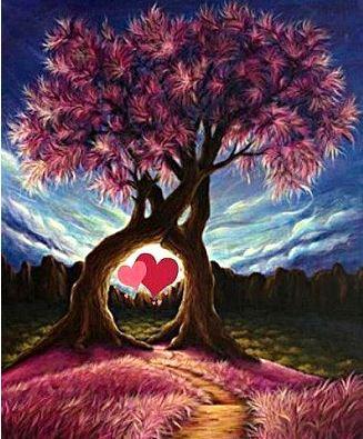Renforcement flux amour